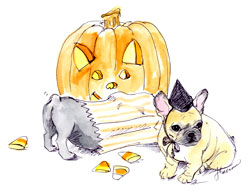 Halloween Frenchie