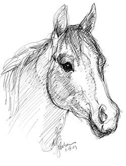 HorsesHead2