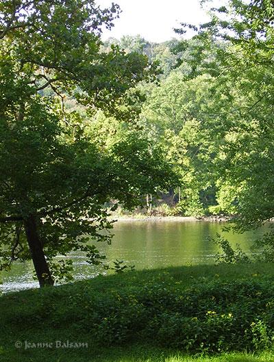 MorningWalk-River2