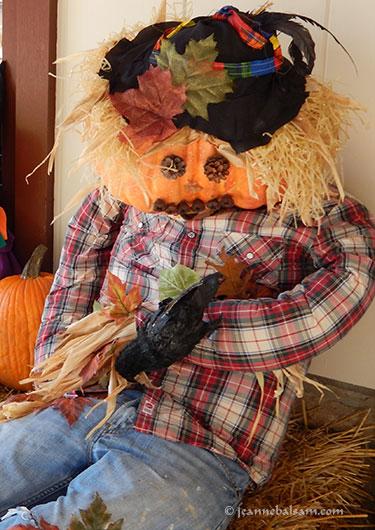 Scarecrow-PlaidShirt2
