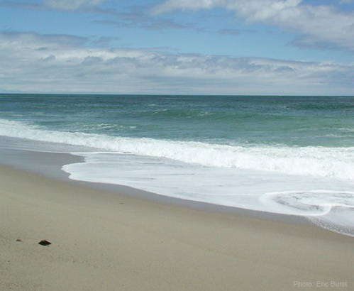 CapeCod-SconsetBeach